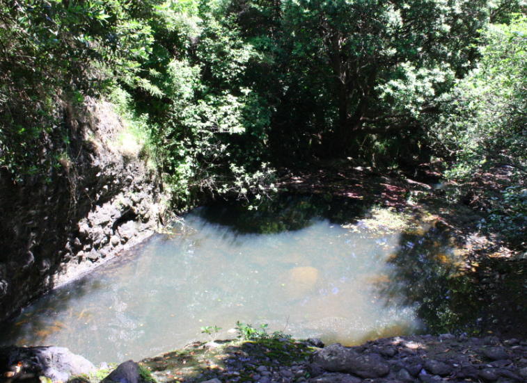karekare water hole swimming west auckland