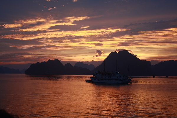 nzmuse halong bay tourist spot