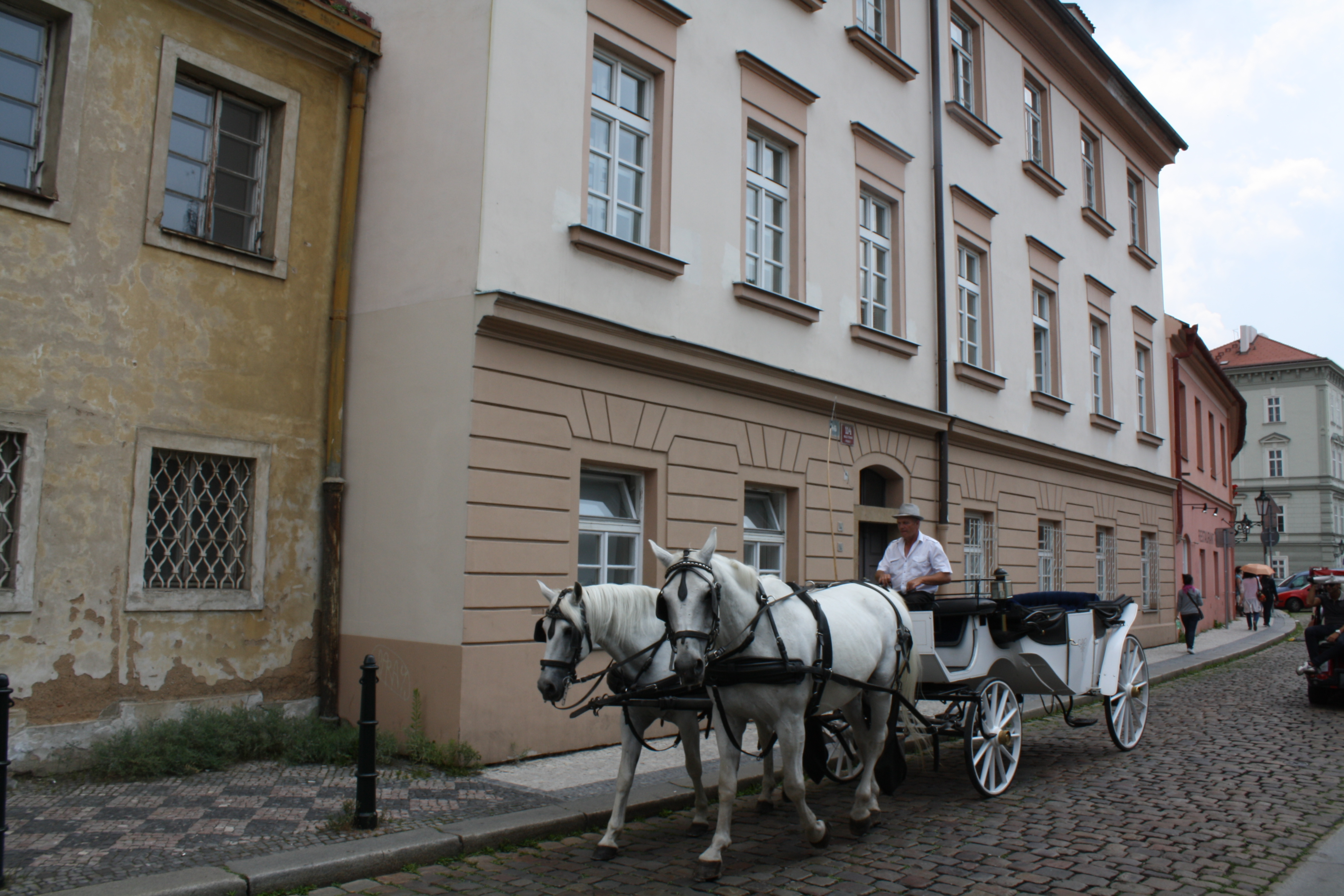 horse carriage prague