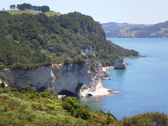 Cathedral Cove - a day trip from Auckland