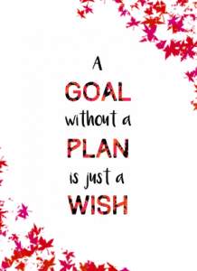 A goal without a plan is just a wish - NZ Muse