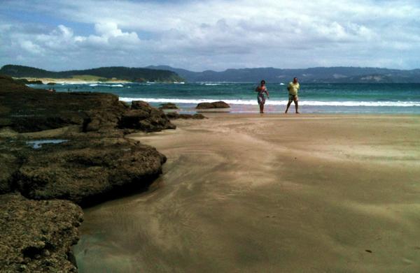 tawharanui beach nz